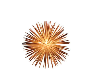 Sea Urchin Lamp – Small Round