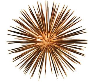 Sea Urchin Lamp – Large Round
